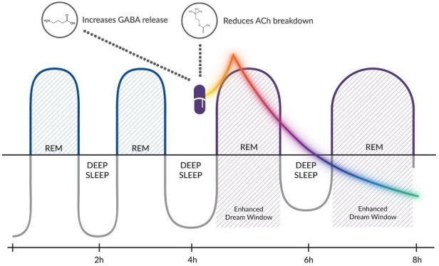 Claridream REM cycles
